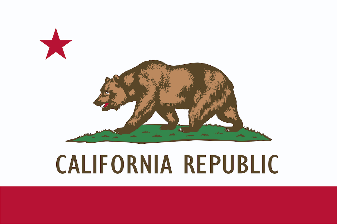 Process Serving Rules in California | Ace Process Service